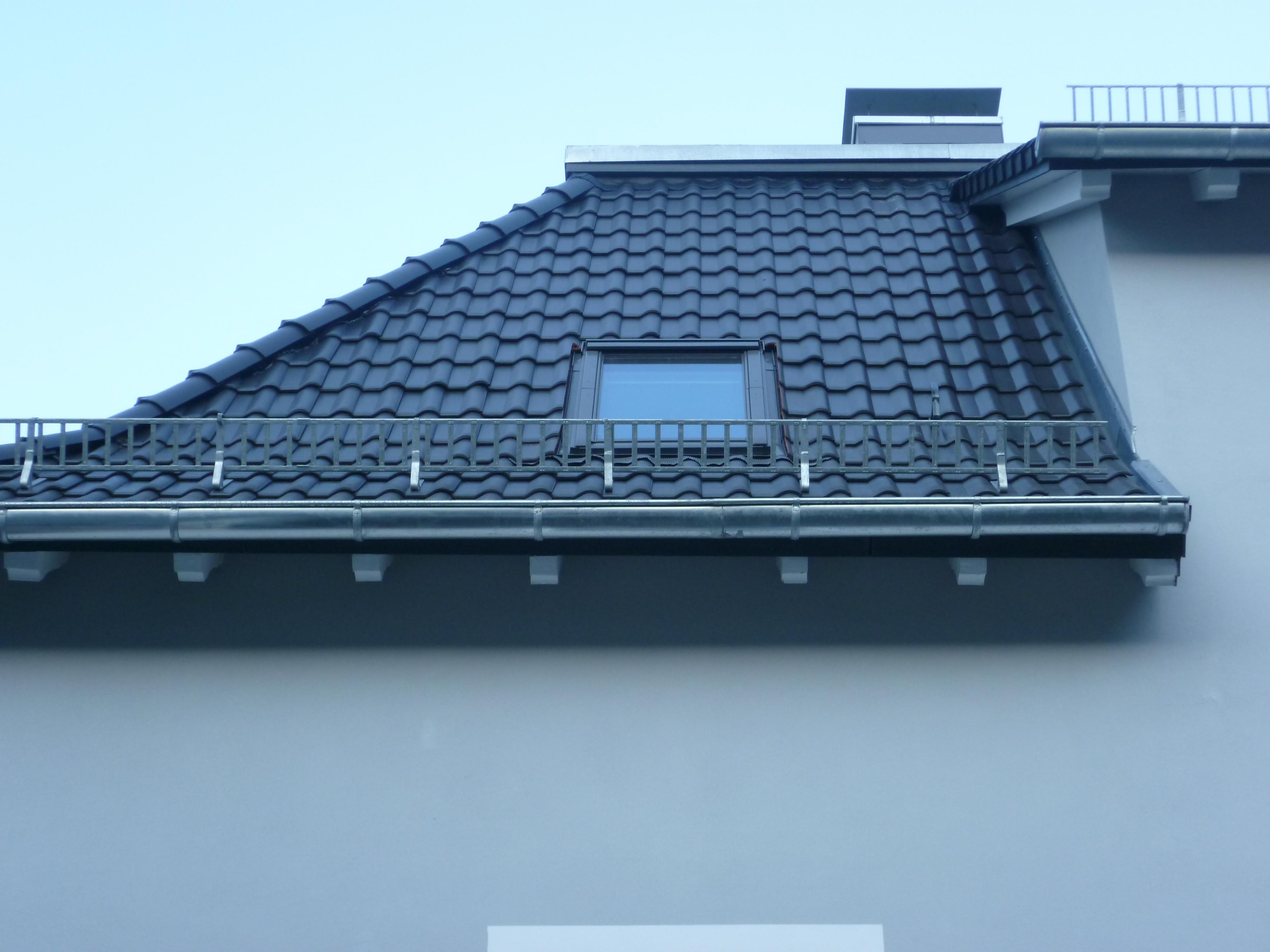 Velux Fenster/ Schneefanggitter